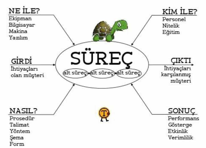 süreç yaklaşımı kaplumbağa modeli