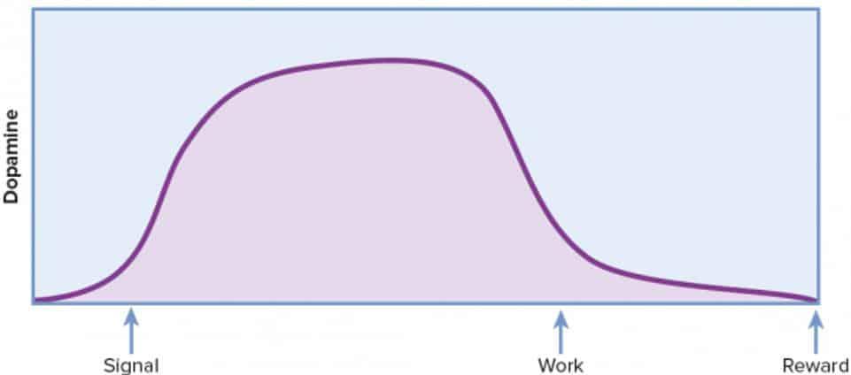 dopamin grafiği