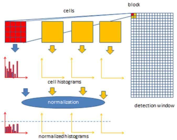 yönlendirilmiş gradyanların vektörü